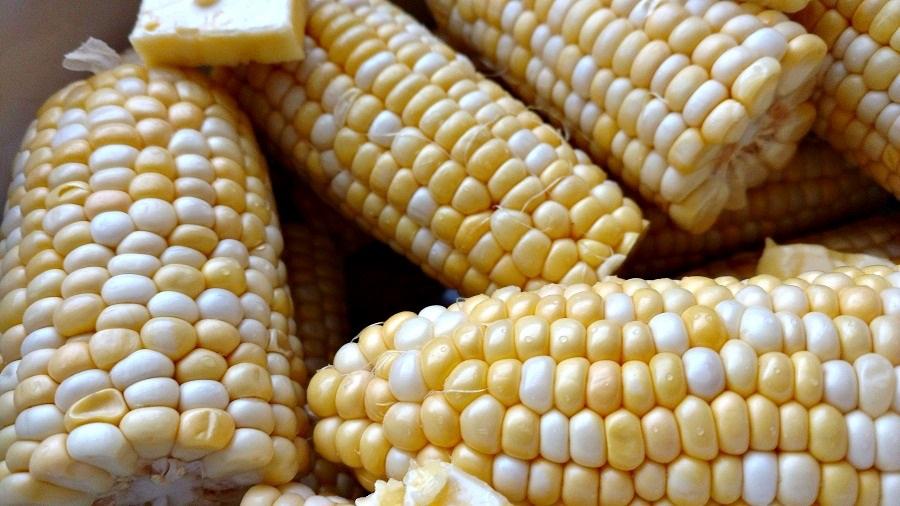 crock-pot corn on the cob